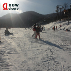 외국인 강습(Foreigner SKI Lessons)